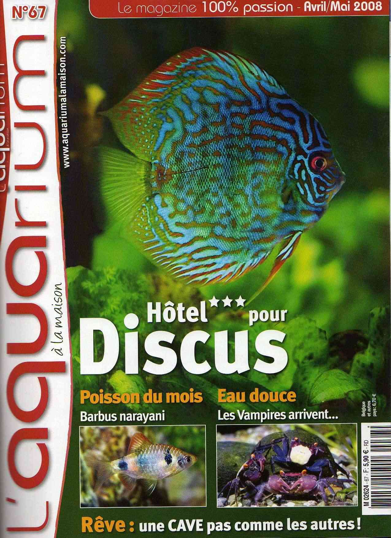 Article aquarium la maison n 67 for Aquarium a la maison pdf