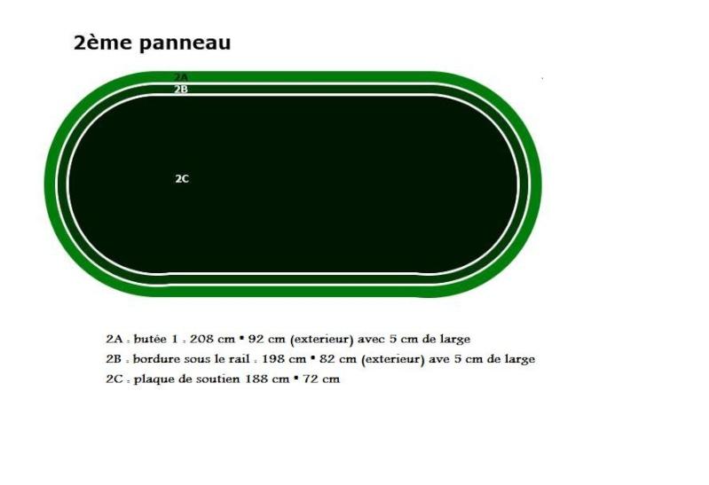 pannea11.jpg