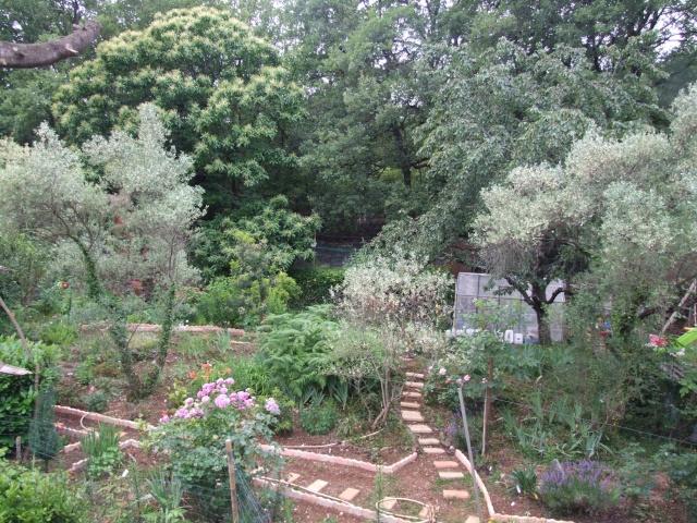 Mon jardin fleuri avant apres amenagement et en 8 ans de for Jardin et plantation