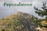 Peyroulienne