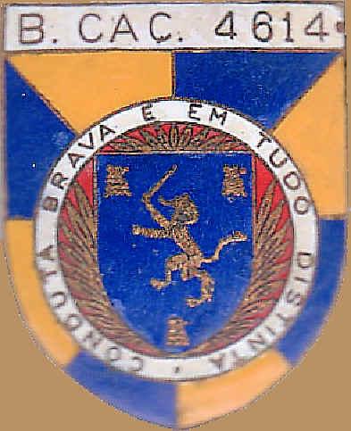 bcac4611.jpg