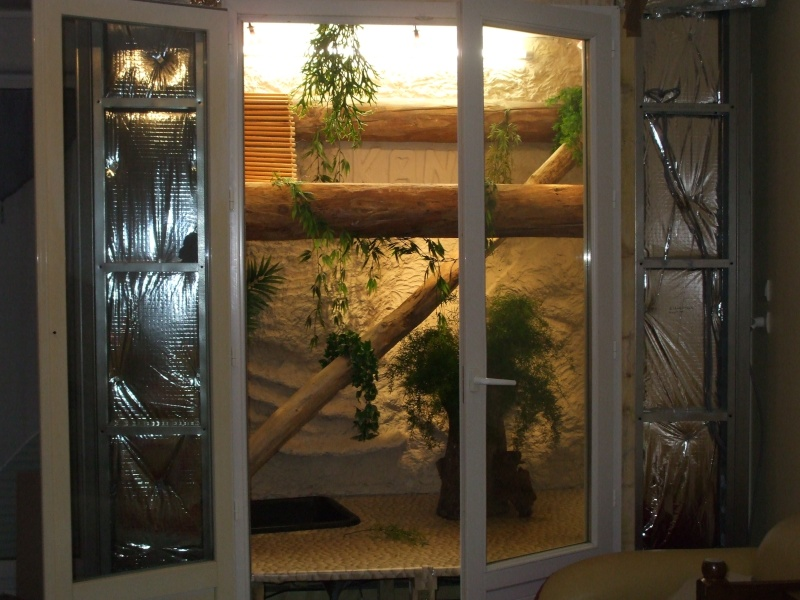 terrarium pour iguane. Black Bedroom Furniture Sets. Home Design Ideas