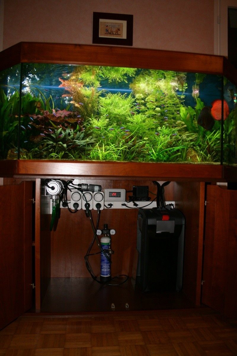 Bac plant amazonien 450 litres for Bac a poisson 500l