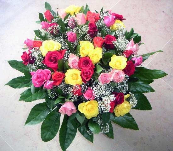 Jennifer Lawrence Wore Oscar De La Renta Screen Actors Guild also 565624034429658643 besides T3470 Joyeux Anniversaire Christ also Jm Barrie 9200058 as well Oscar Wilde Quotes. on oscar happy birthday