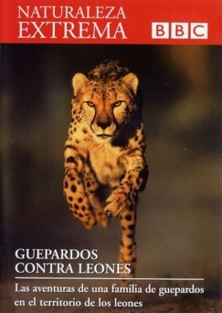 Naturaleza extrema: Guepardos contra leones [SATRip][Espa�ol]