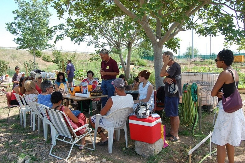 forum frontignan, compostage aux jardins familiaux et collectifs du caramus à Frontignan