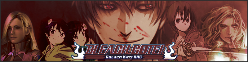 Bleach Gotei