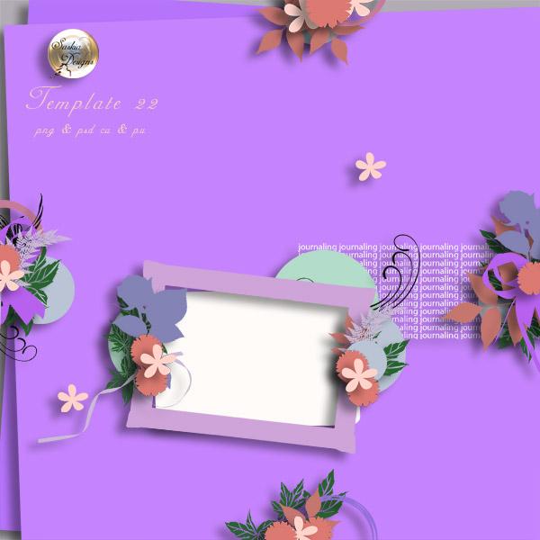 http://i48.servimg.com/u/f48/13/88/70/91/templa15.jpg