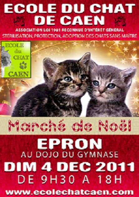 ecole du chat de caen march 233 de no 235 l d epron le 4 12 2011