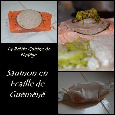 http://i48.servimg.com/u/f48/14/28/07/87/saumon11.jpg