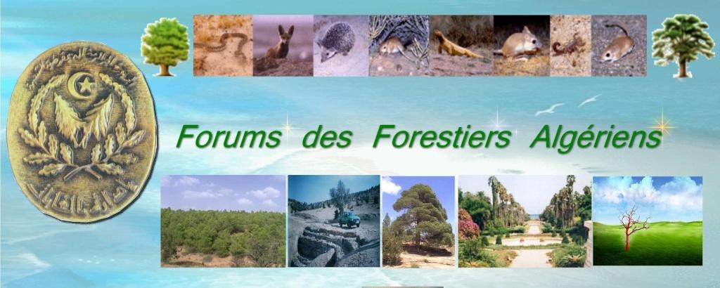 Forums des Forestiers Algériens