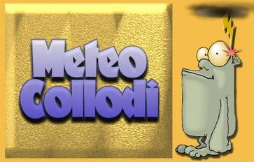 MeteoCollodi (PT)
