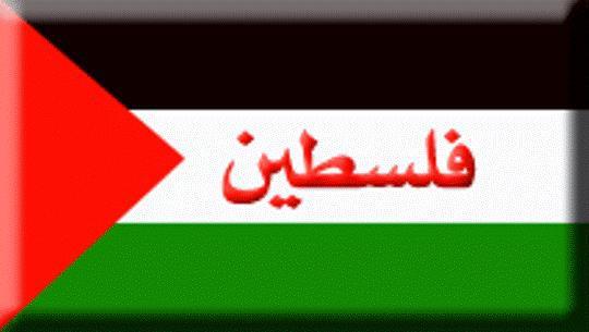 فلسطين تنزف