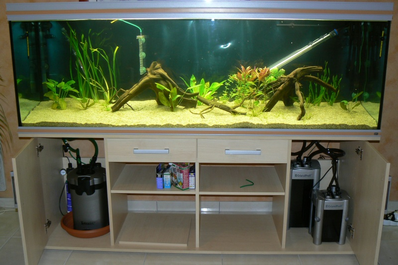 600l amazonien page 3 for Aquarium 600l