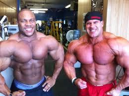 lesukov steroid cycle