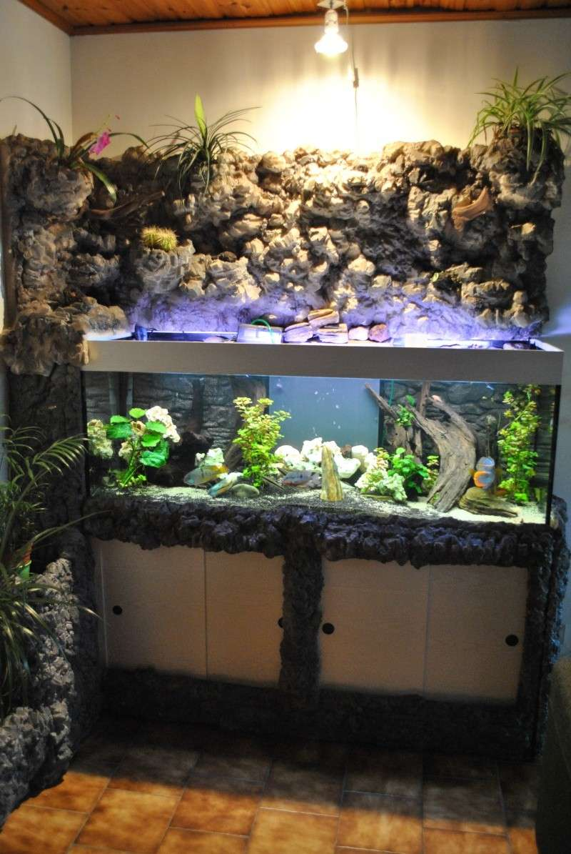 D cor ext rieur de l 39 aquarium for Aquarium exterieur