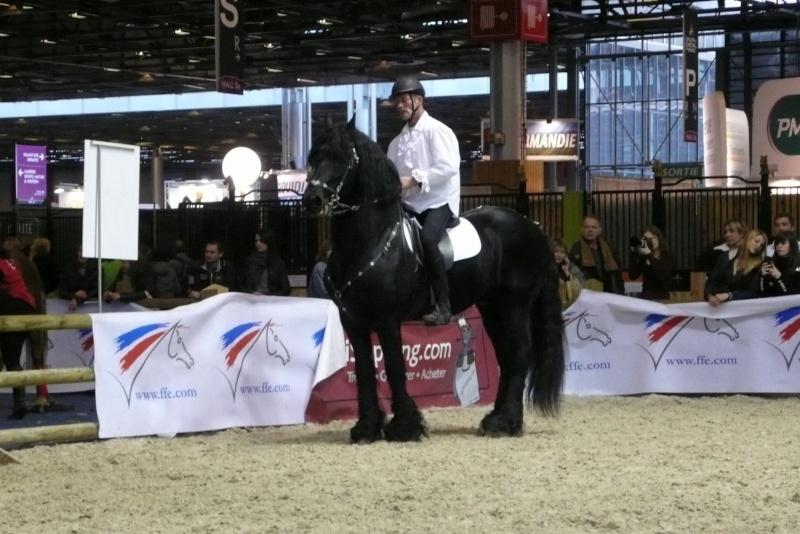Le salon du cheval paris 2011 for Salon du cheval a paris