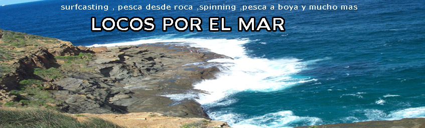 Surfcasting Foro