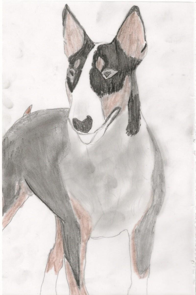 Dessins de chevaux - Chevaux dessins ...