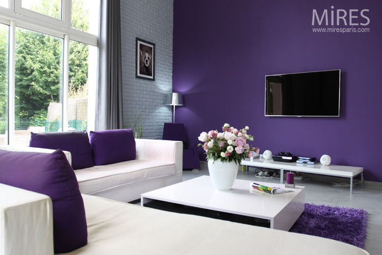 photos de salon salle manger couleur violet. Black Bedroom Furniture Sets. Home Design Ideas