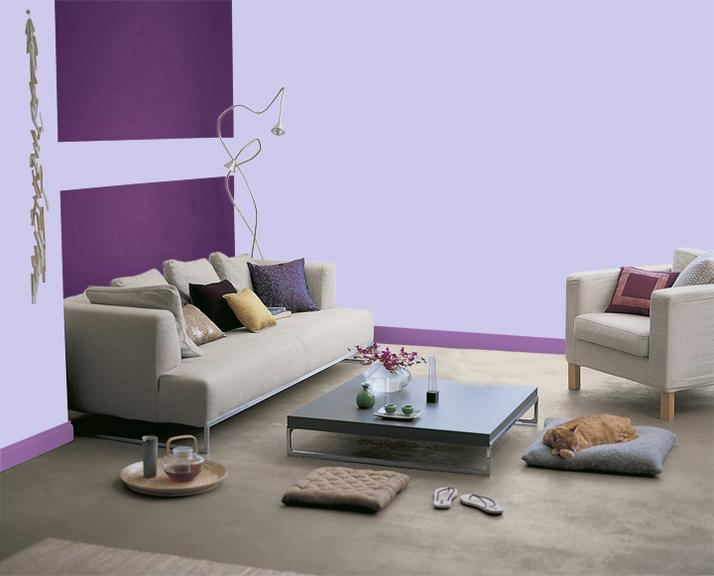 Photos de salon salle manger couleur violet for Peinture mur salon design