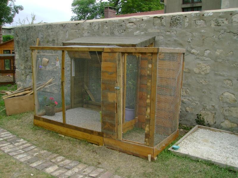Construire une voliere exterieur en bois 28 images for Bois construction exterieur