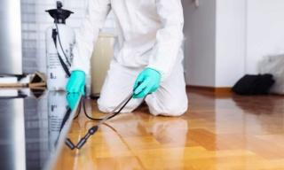 تنظيف حشرات بالدمام 0554387066